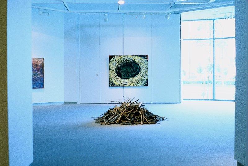Installation, Richmond Art Gallery, 1993