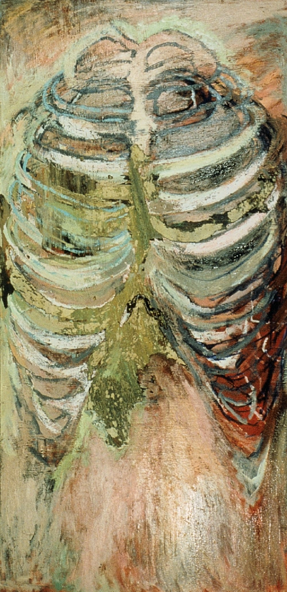 "Ribcage, 36"" x 72"", acrylic over oil, 1988 (private collection)"