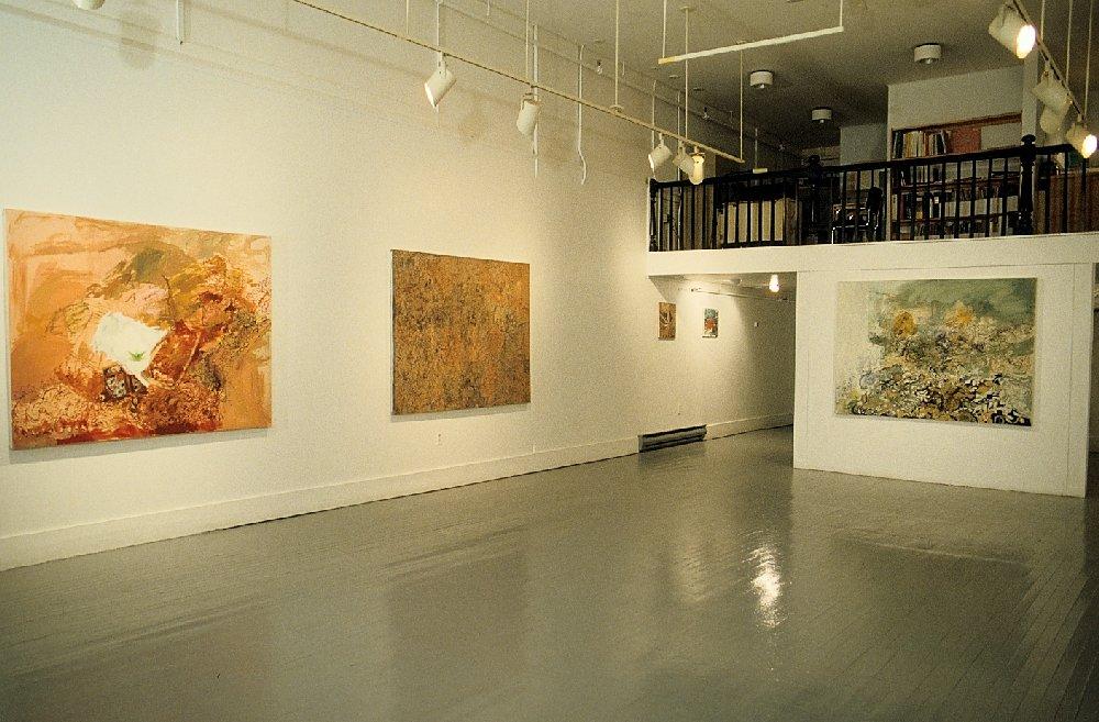 Installation, Anna Leonowens Gallery, Halifax, Nova Scotia, 1989