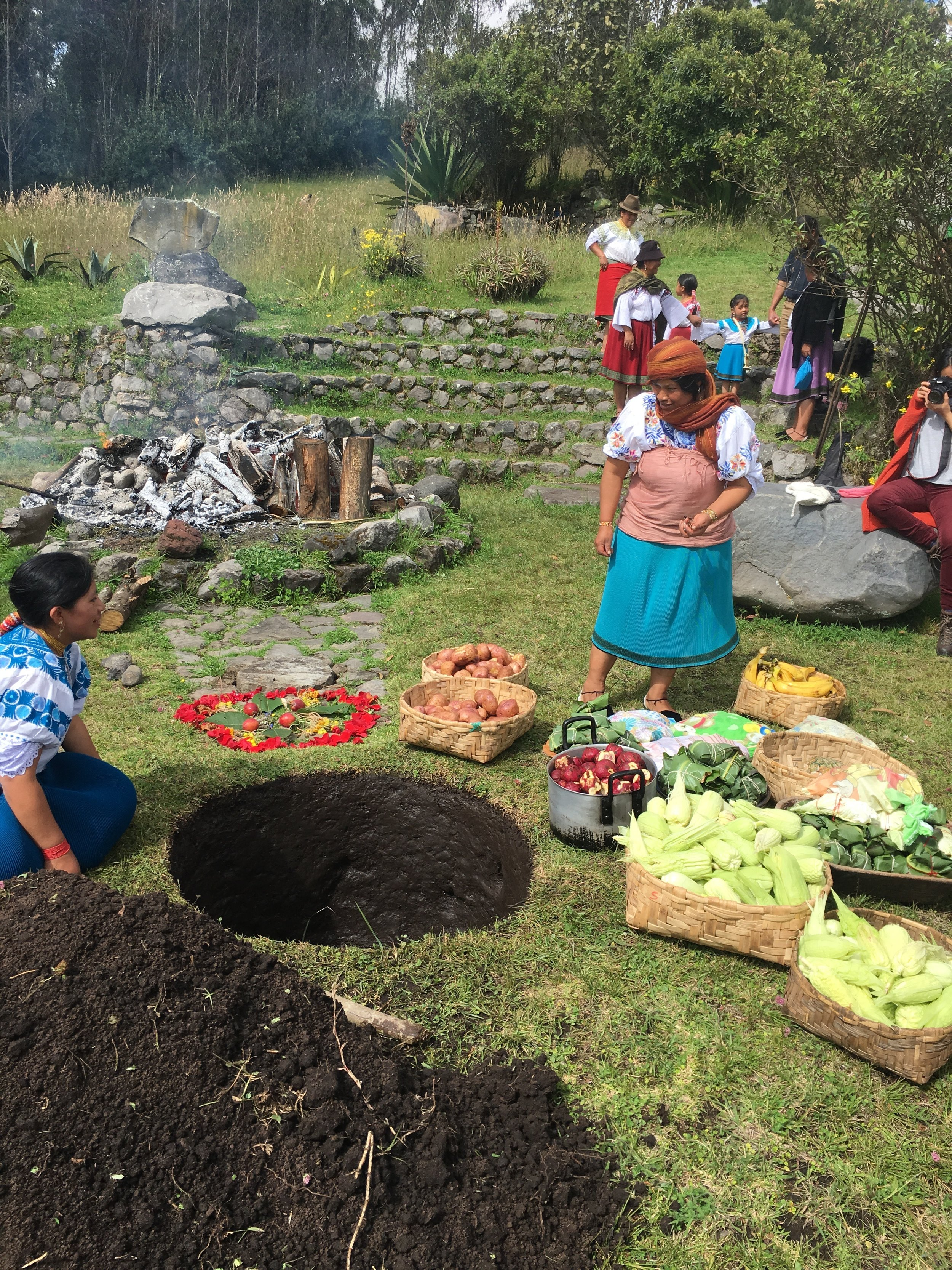 Preparing to fill the hole with the hot stones, potatoes, sweet potatoes, corn, chicken wrapped in leaves, cabbage, pineapple, plantains, etc.