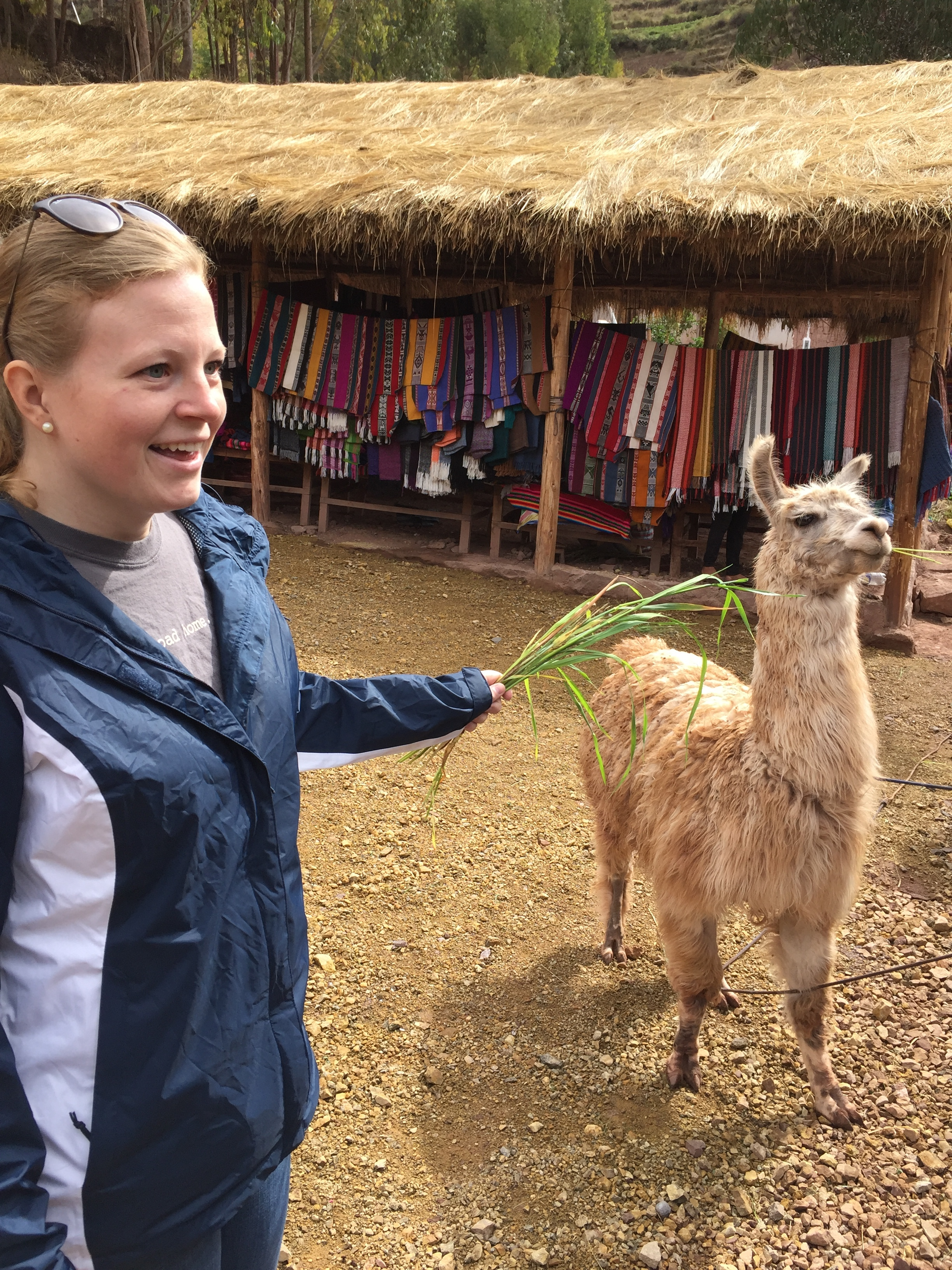 Travel makes you do weird things like: get way too close to llamas in Peru.