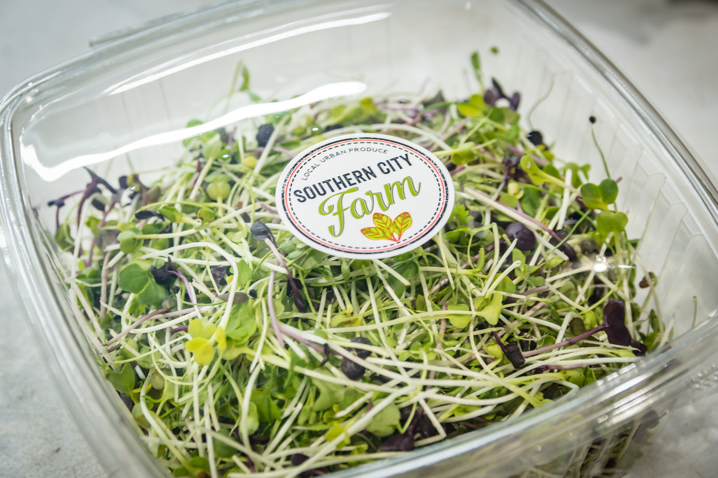 Southern City Farm Sprouts
