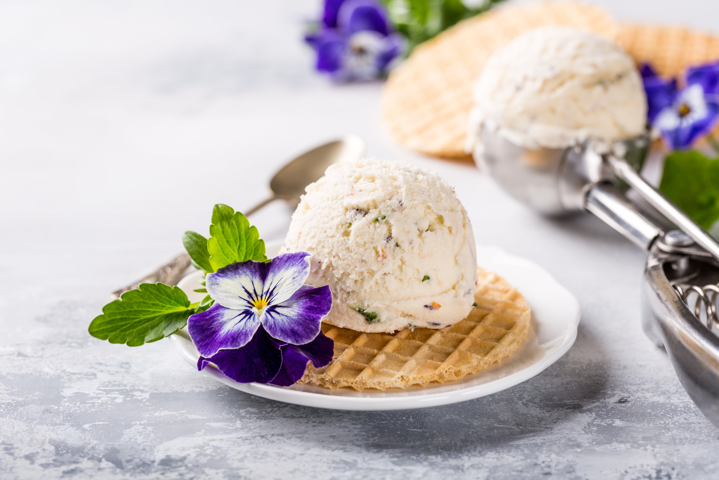 vanilla-ice-cream-with-edible-flowers-3VT2H8L.jpg