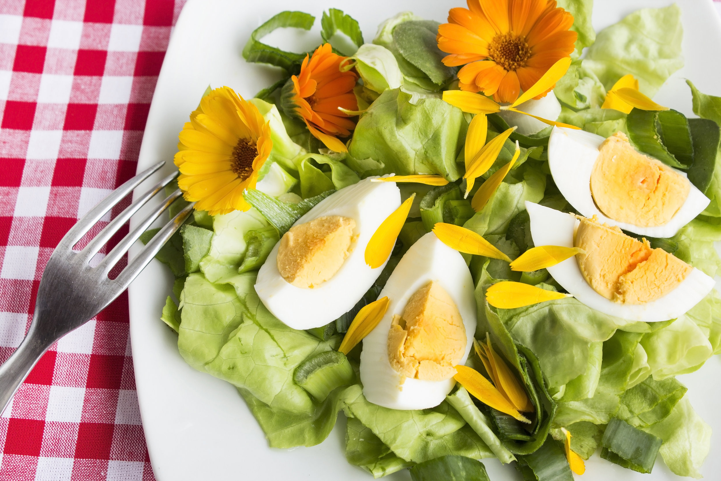egg-salad-with-marigold-76JXLPM.jpg