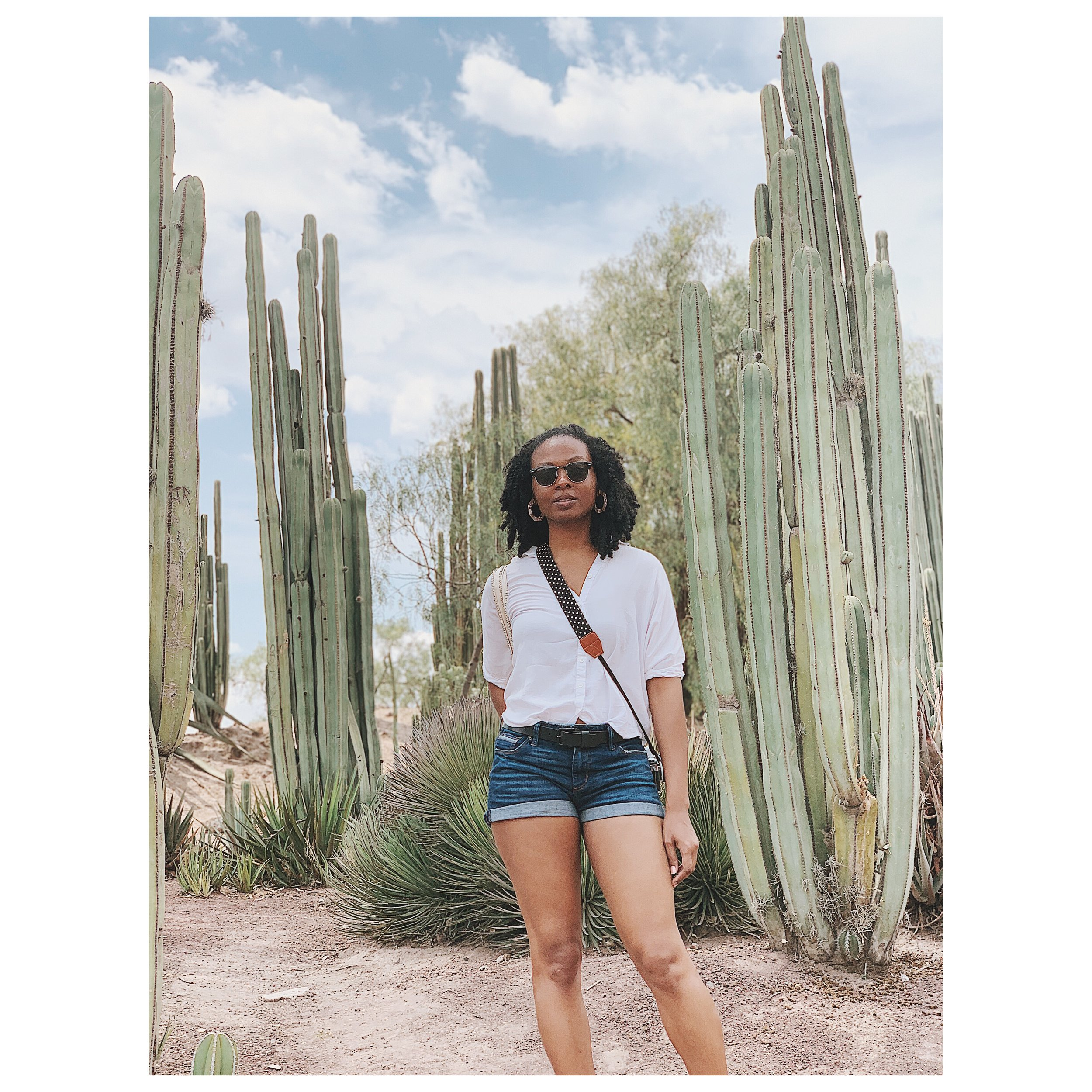 Sis is tired, but I couldn't miss a photo op with these beautiful cacti.