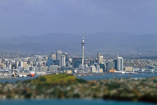 Auckland's design champion says the city is being held back by its lack of a world class transport system.