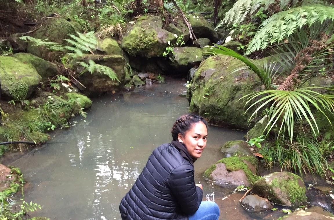 At Takou stream in Northland.
