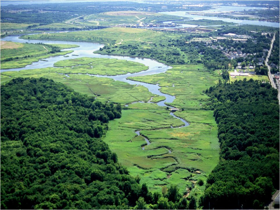 Fresh Kills was once the biggest landfill in the world. Image courtesy of Freshkills Park and the City of New York.