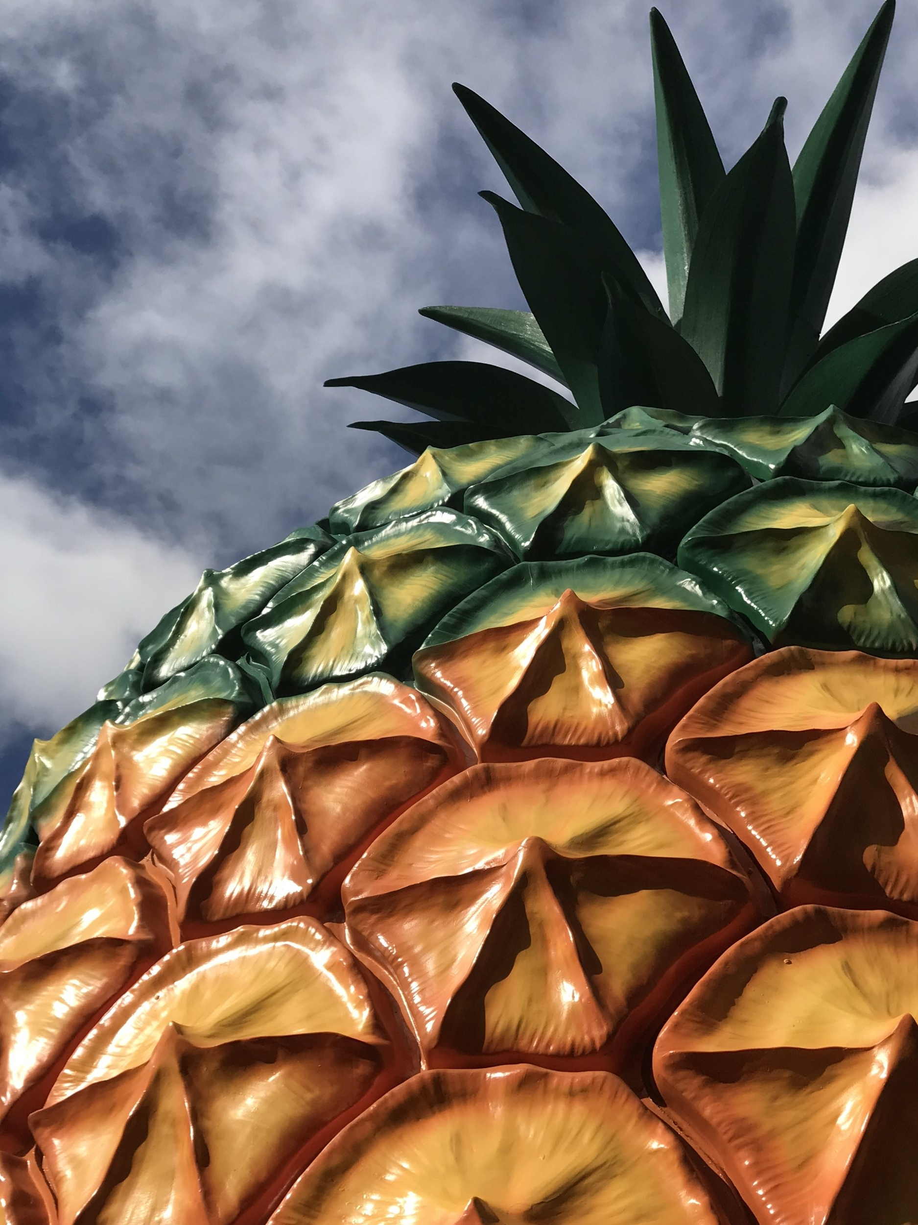 """The Big Pineapple by Vicky Pattison of Art of Crazy.  Judges thought the """"Big Pineapple"""" demonstrated """"an impressively artistic and authentic use of colour on a local icon."""""""