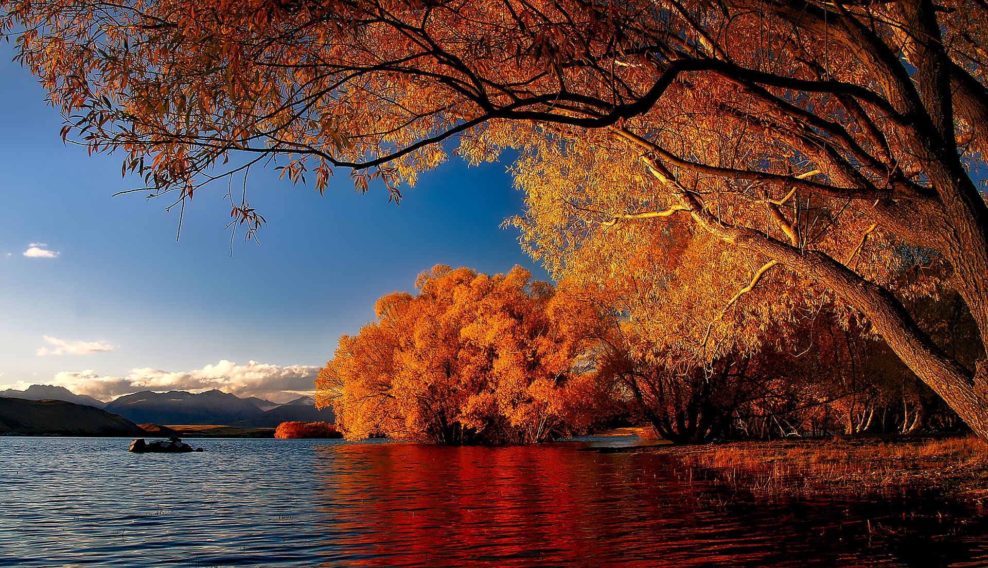 The NZILA president says the planned tourism levy makes sense if it helps conserve popular tourist spots like Lake Tekapo pictured here.