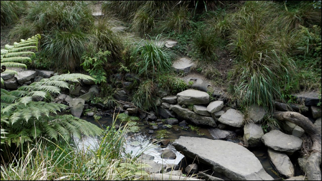 Thoughtful rock placement in a daylighted stream allows the adventurous to take an alternative path across the water - and there should also be an accessible path and bridge.