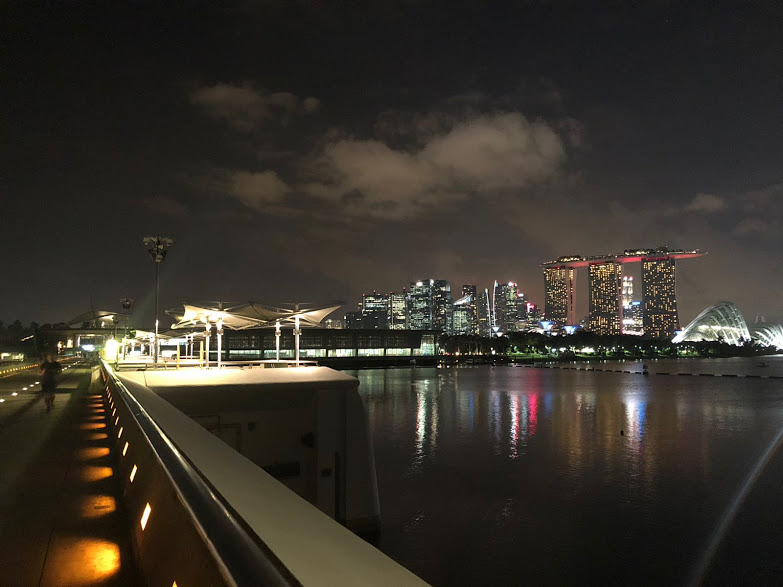 One of the issues up for discussion at the IFLA World Congress will be how to cool Singapore.