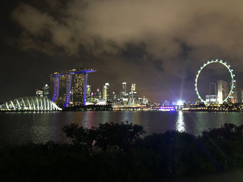 Around a thousand people are expected to attend the IFLA World Congress in SIngapore.