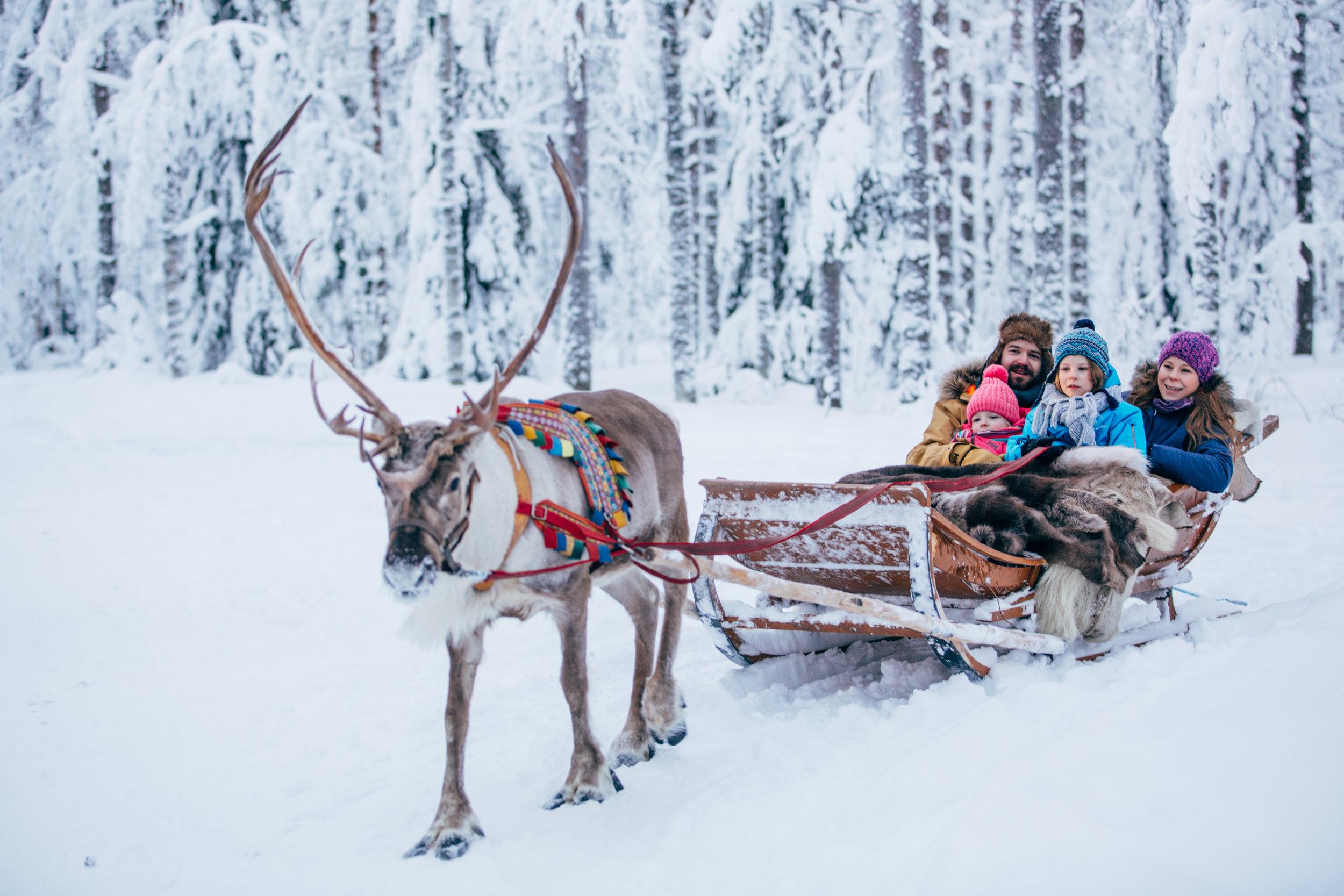 A reindeer ride in Rovaniemi, Lapland. Copyright: ©Visit Rovaniemi (Rovaniemi Tourism & Marketing Ltd.