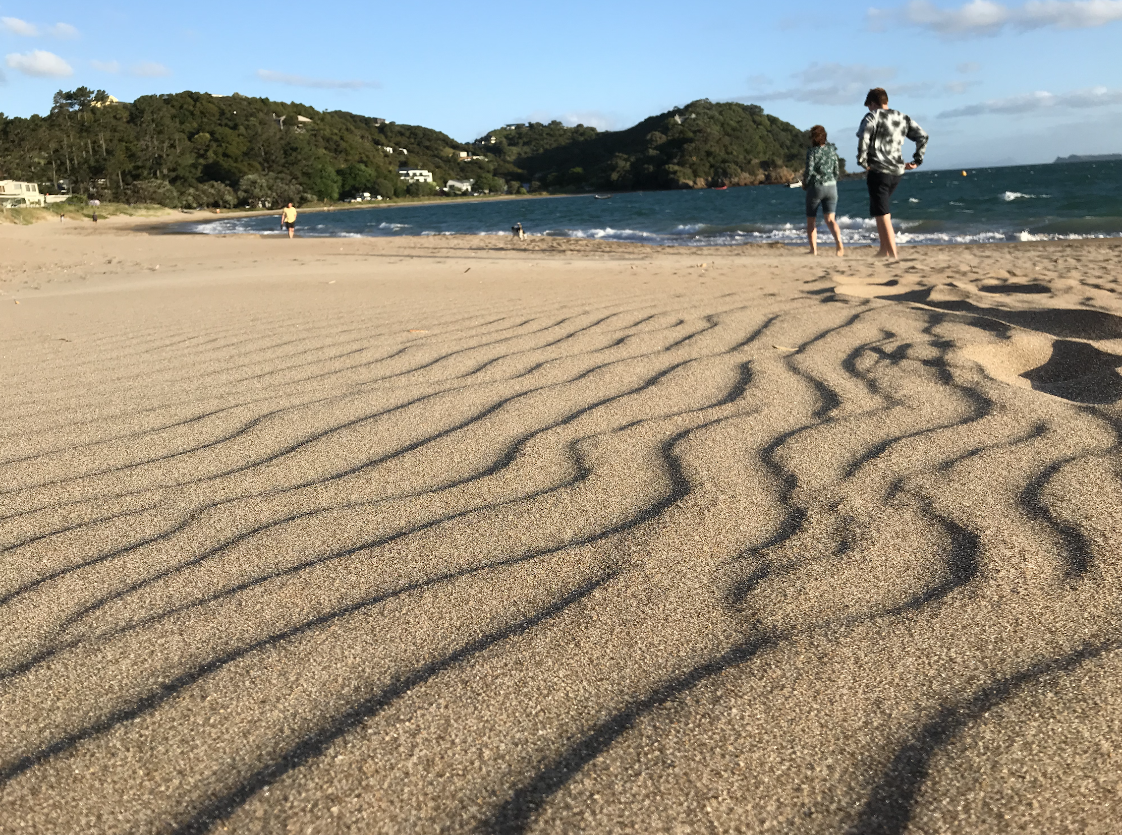 Wind created sand ripples in Northland.