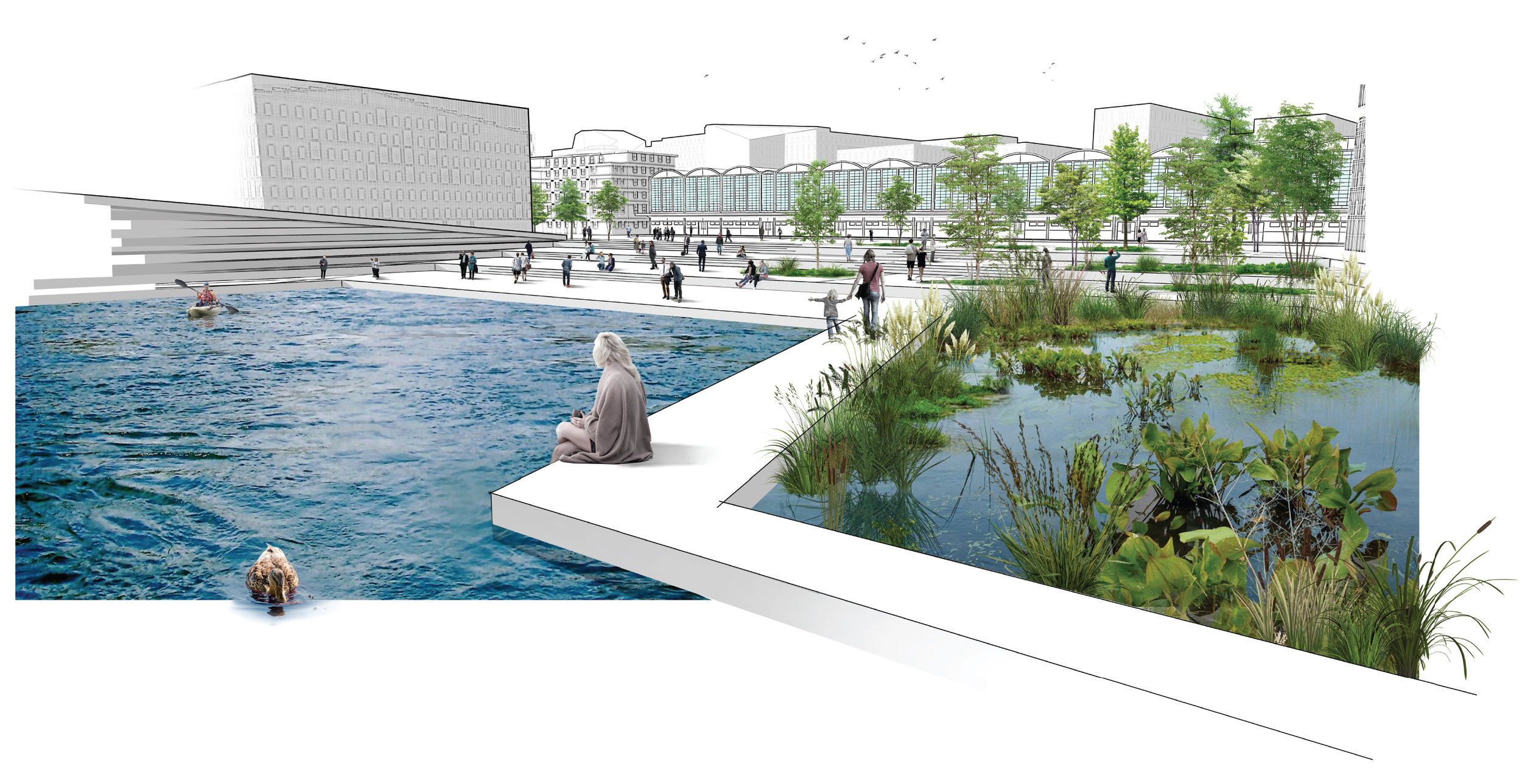 The plan aims to create both a public urban waterfront as well as a naturalised shoreline and wetlands.