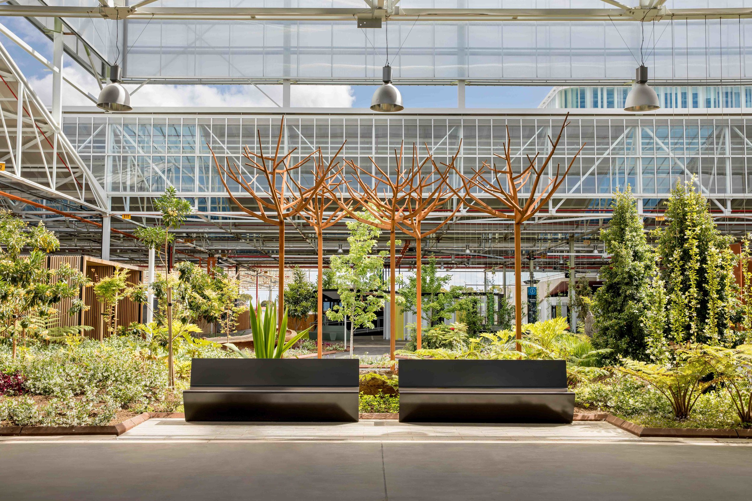James Hayter's practice, Oxigen, has been strongly involved with Tonsley, the former Mitsubishi Plant in Adelaide.