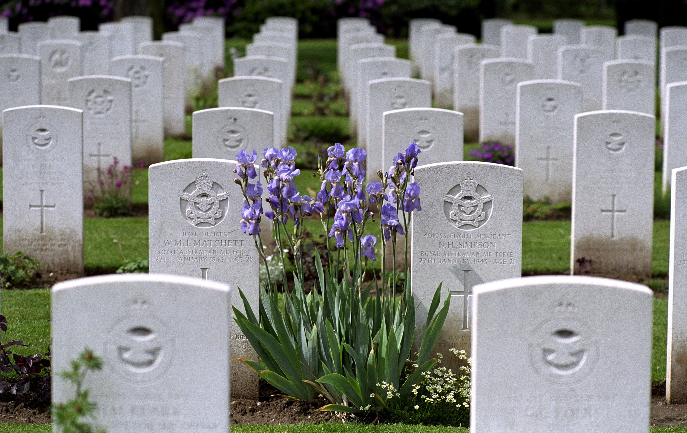 Reichswald Forest War Cemetery in Germany. Photo credit: Commonwealth War Graves Commission
