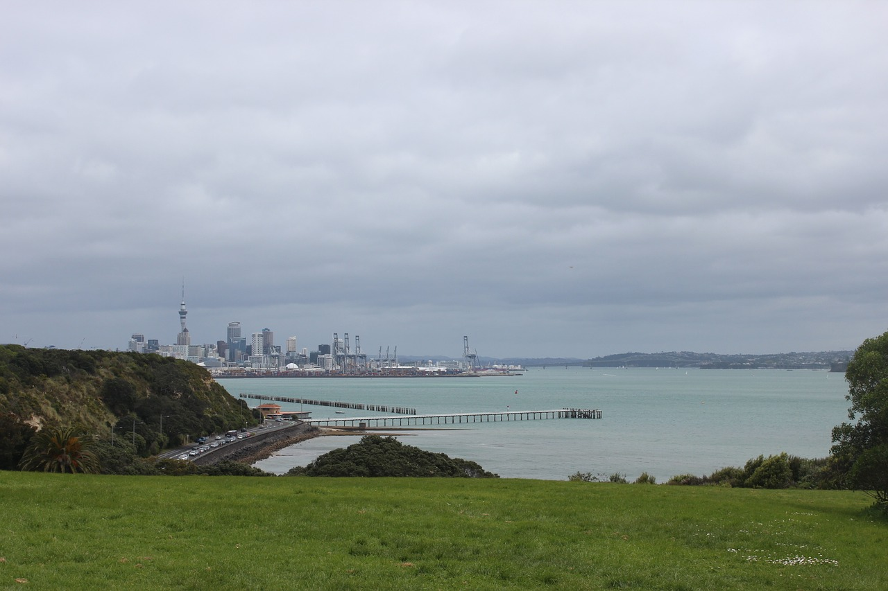 A peak at Auckland City from the east. Image by Wallula from Pixabay