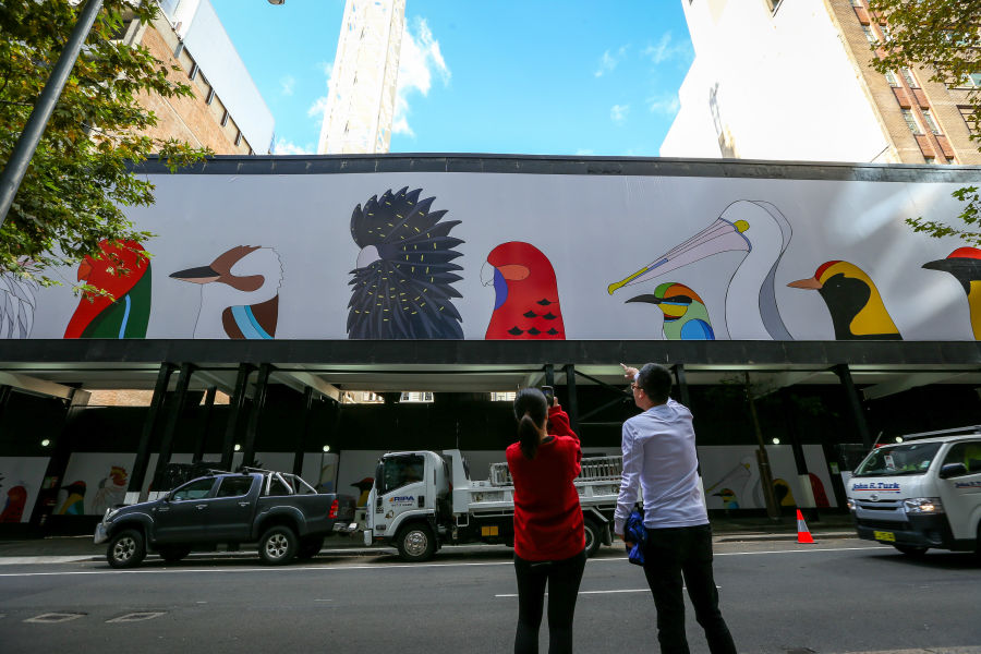 Birds of Australia by Camila De Gregorio and Christopher Macaluso of illustration and design studio, Eggpicnic. The studio produces fine art prints and toys to raise funds and awareness about wildlife conservation. This work was chosen by the City of Sydney for its creative hoardings project.