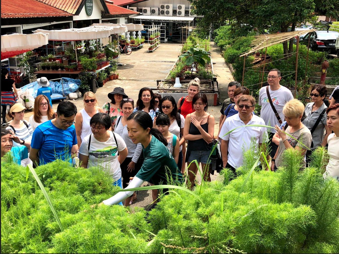Edible Garden City conducts regular workshops and outreach, to empower and teach Singaporeans to grow their own food. Photo credit: Edible Garden City.