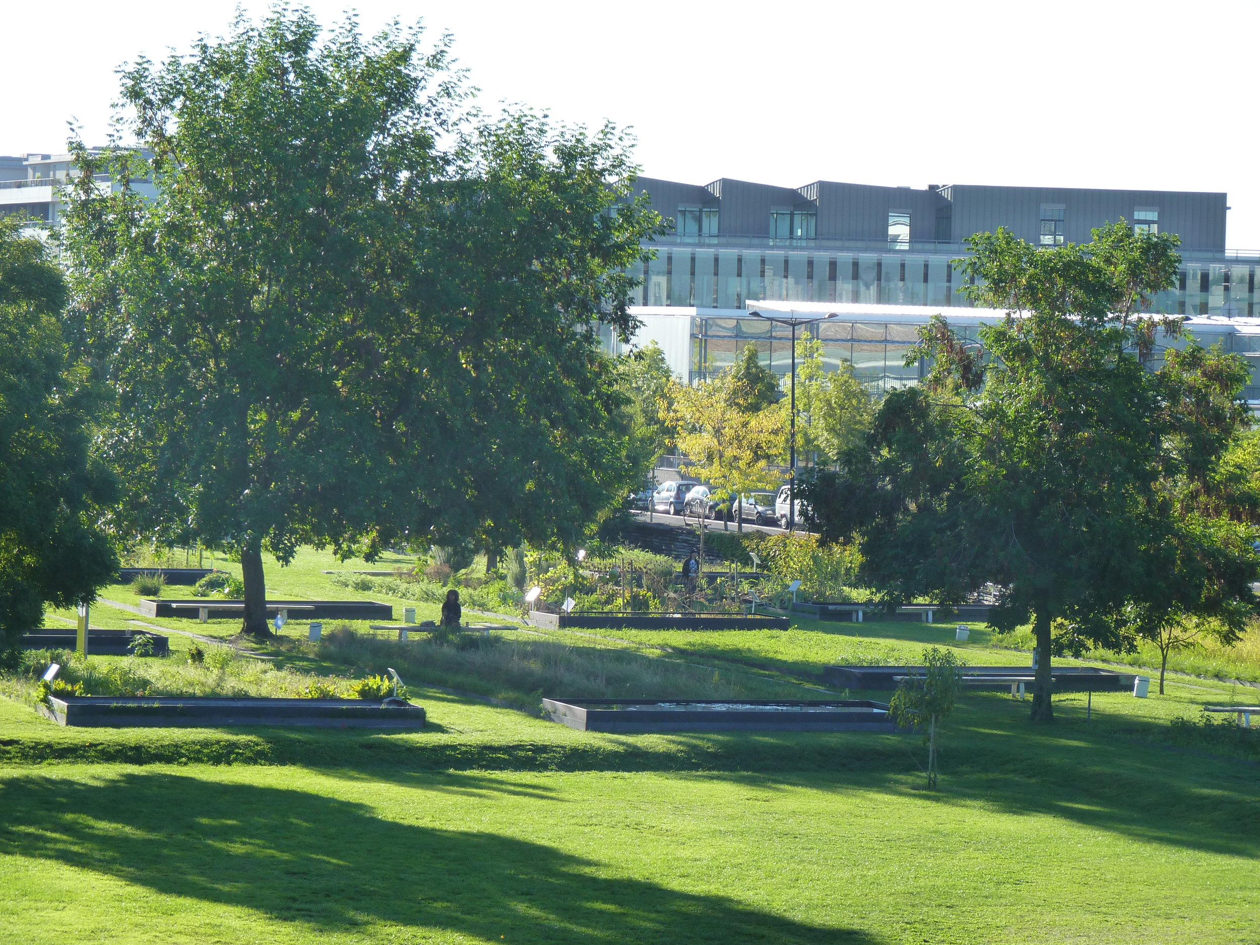 Botanic garden in Bordeaux
