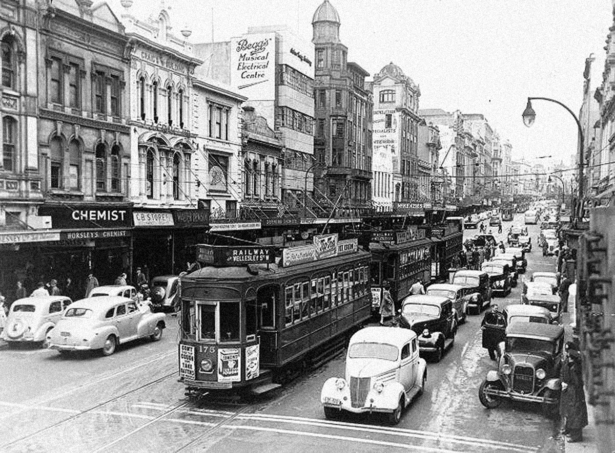 Trams in Auckland.