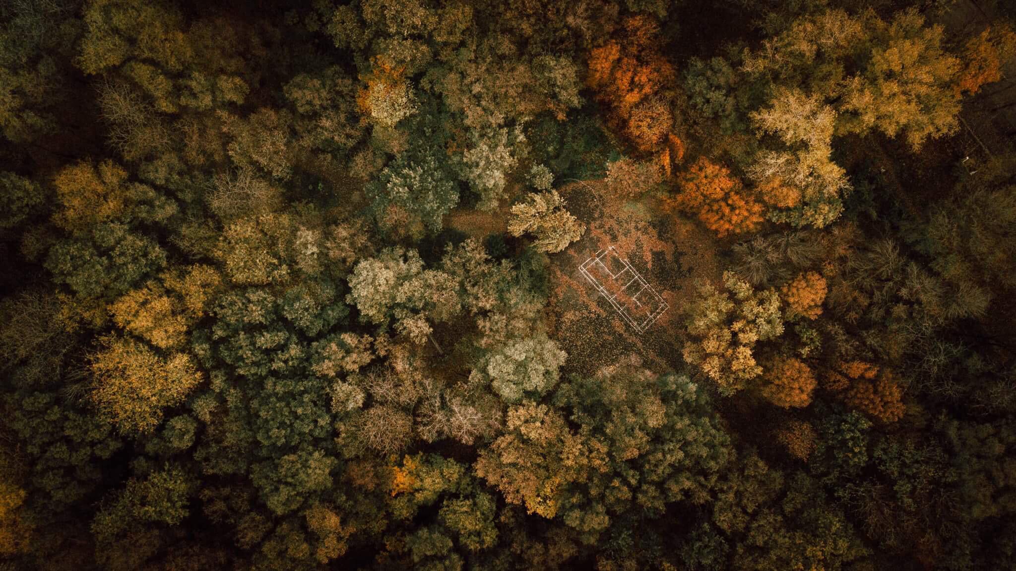 Autumn game, Dnipropetrovsk Oblast, Ukraine. Photo: David Carbonell/AGORA images