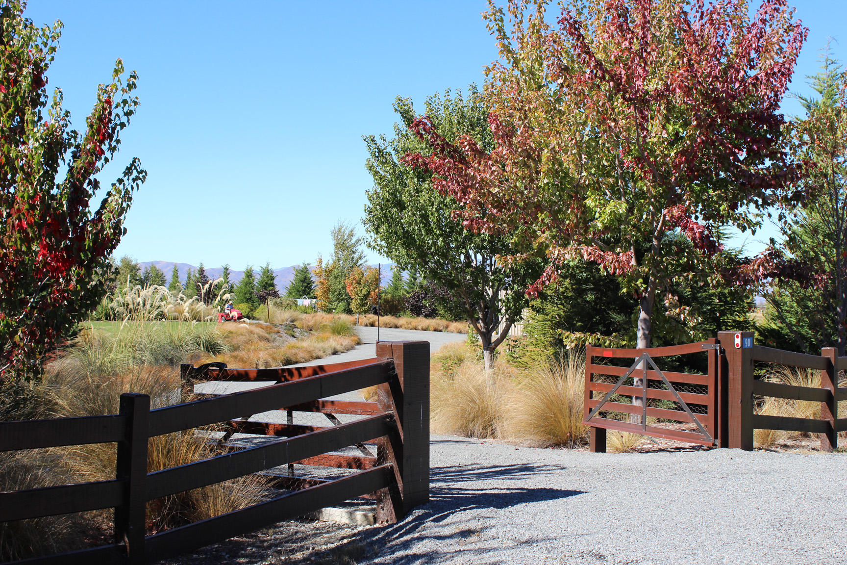 Entrance to the property creates sense of arrival with maples and winding driveway.jpg