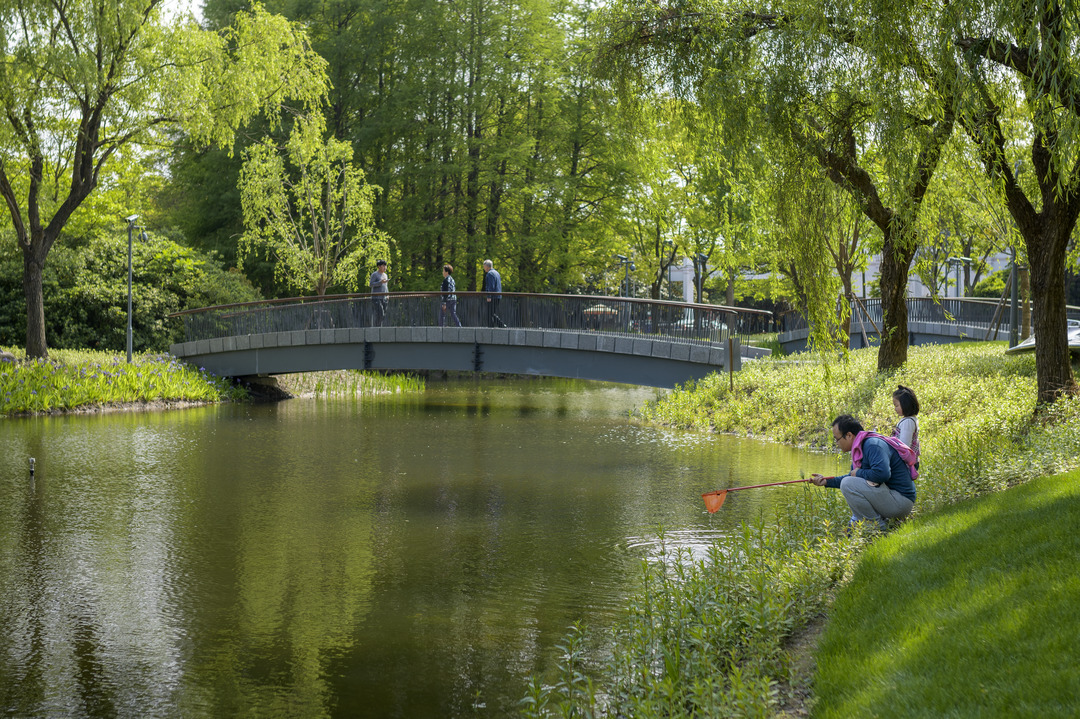 The new park will act as a catalyst to foster further redevelopment in its urban neighbourhood.