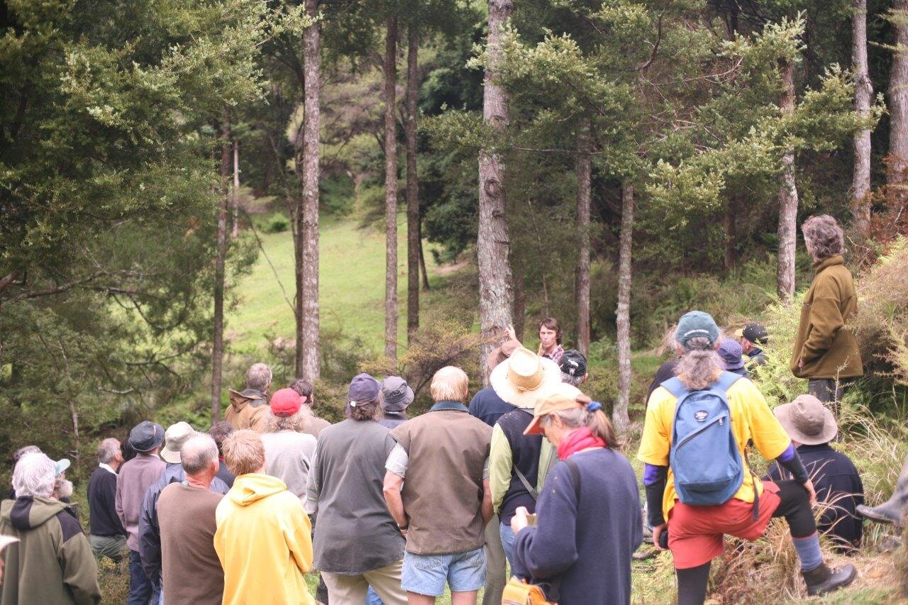 Paul Quinlan speaking at a Northland Totara Working Group field day.