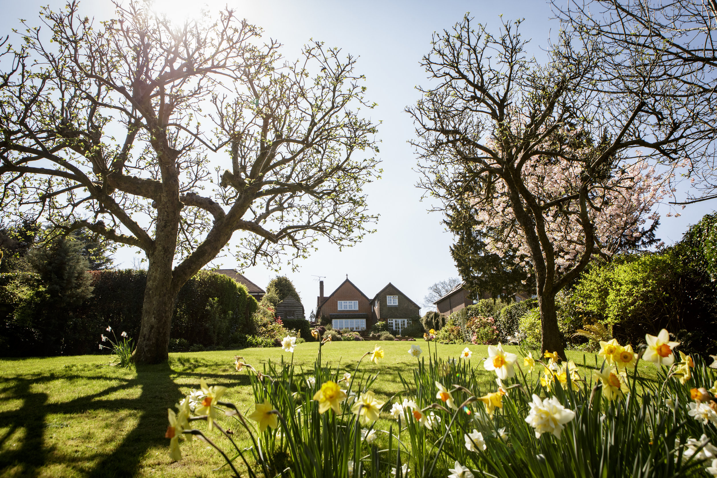 My parent's house in the village of Dockenfield, in surrey, about an hour outside of London.