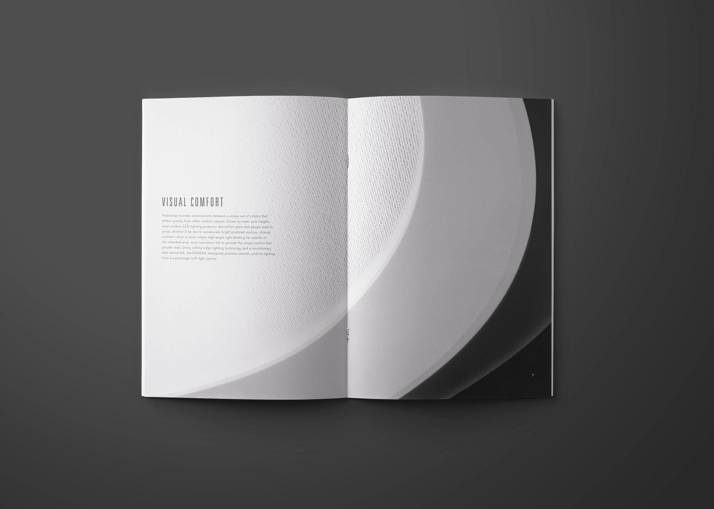 RADEAN_Brochure_Single Spread 1.jpg