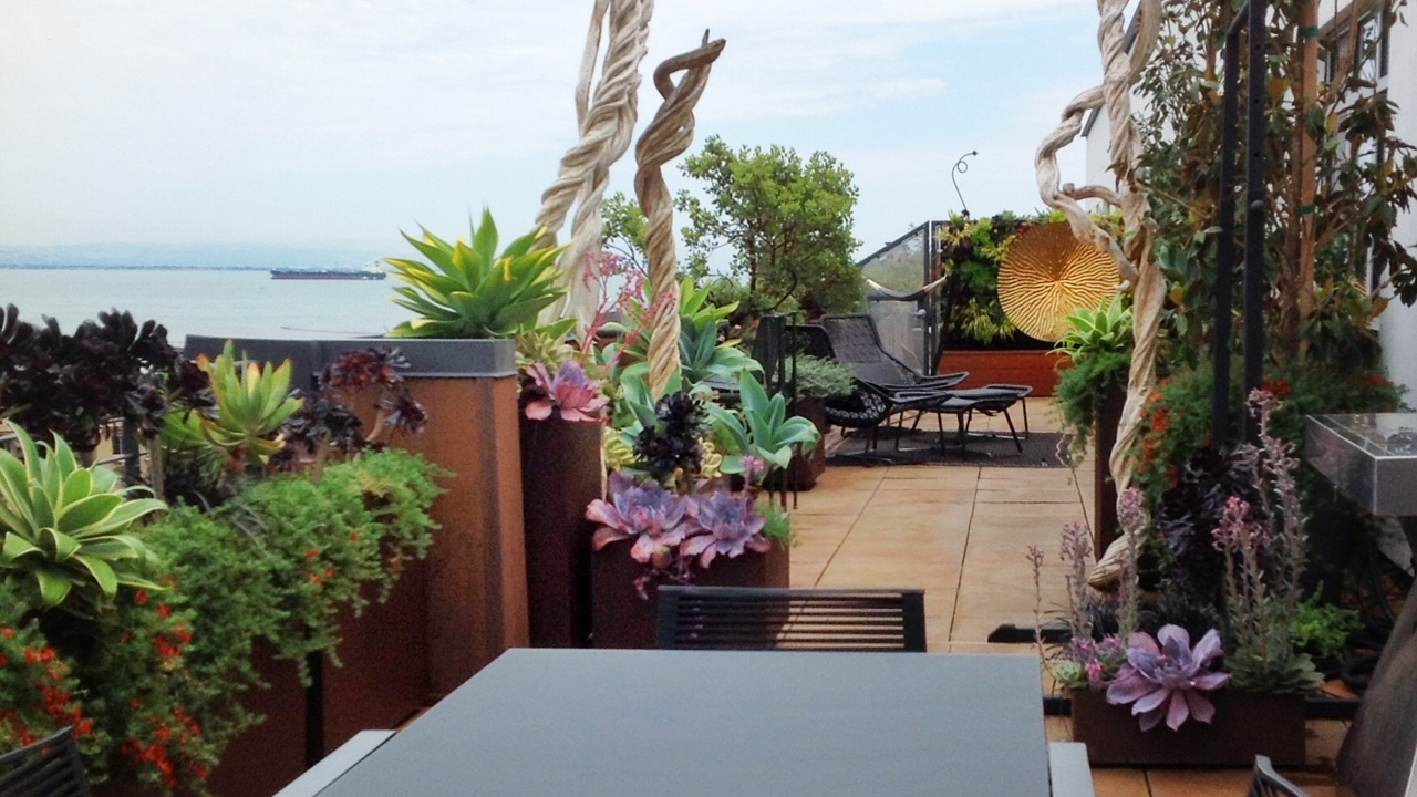terrace gardens - The best room outside the house