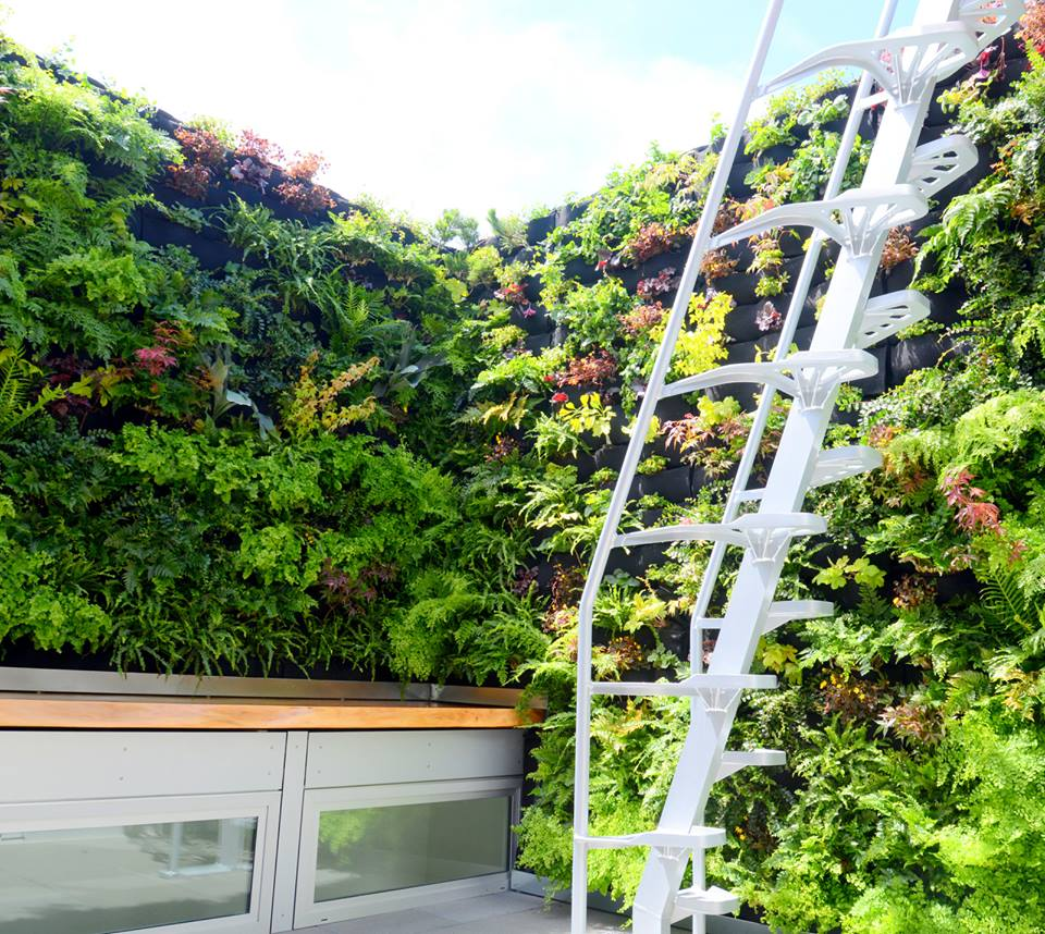 Doreen Gallery Vertical Gardens Living Green Design