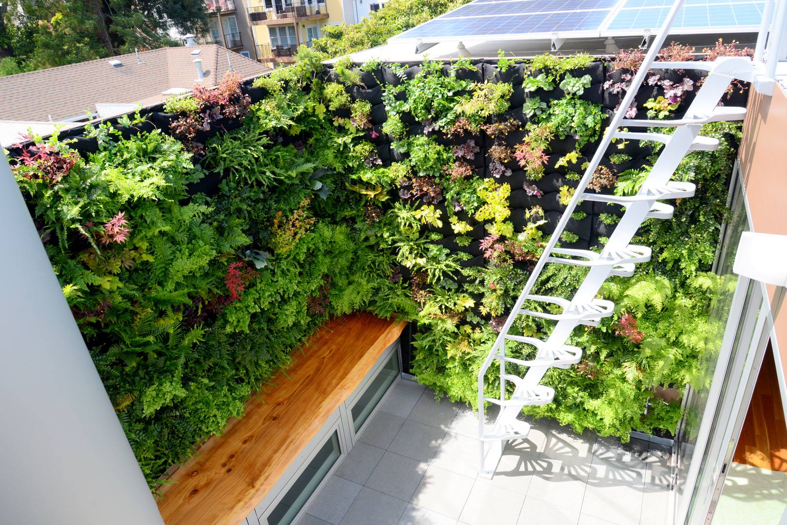 vertical garden (1).jpg