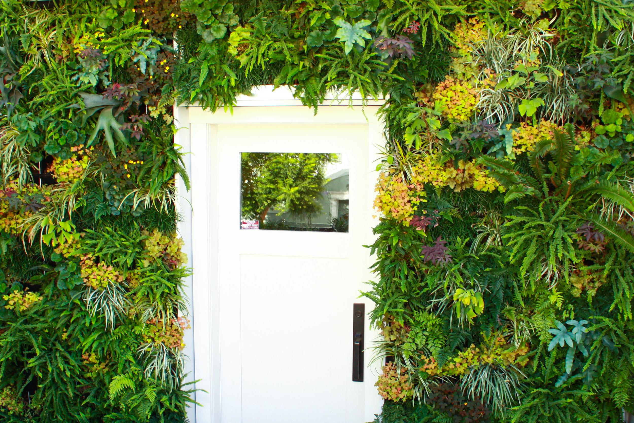 green wall with door 2.jpg