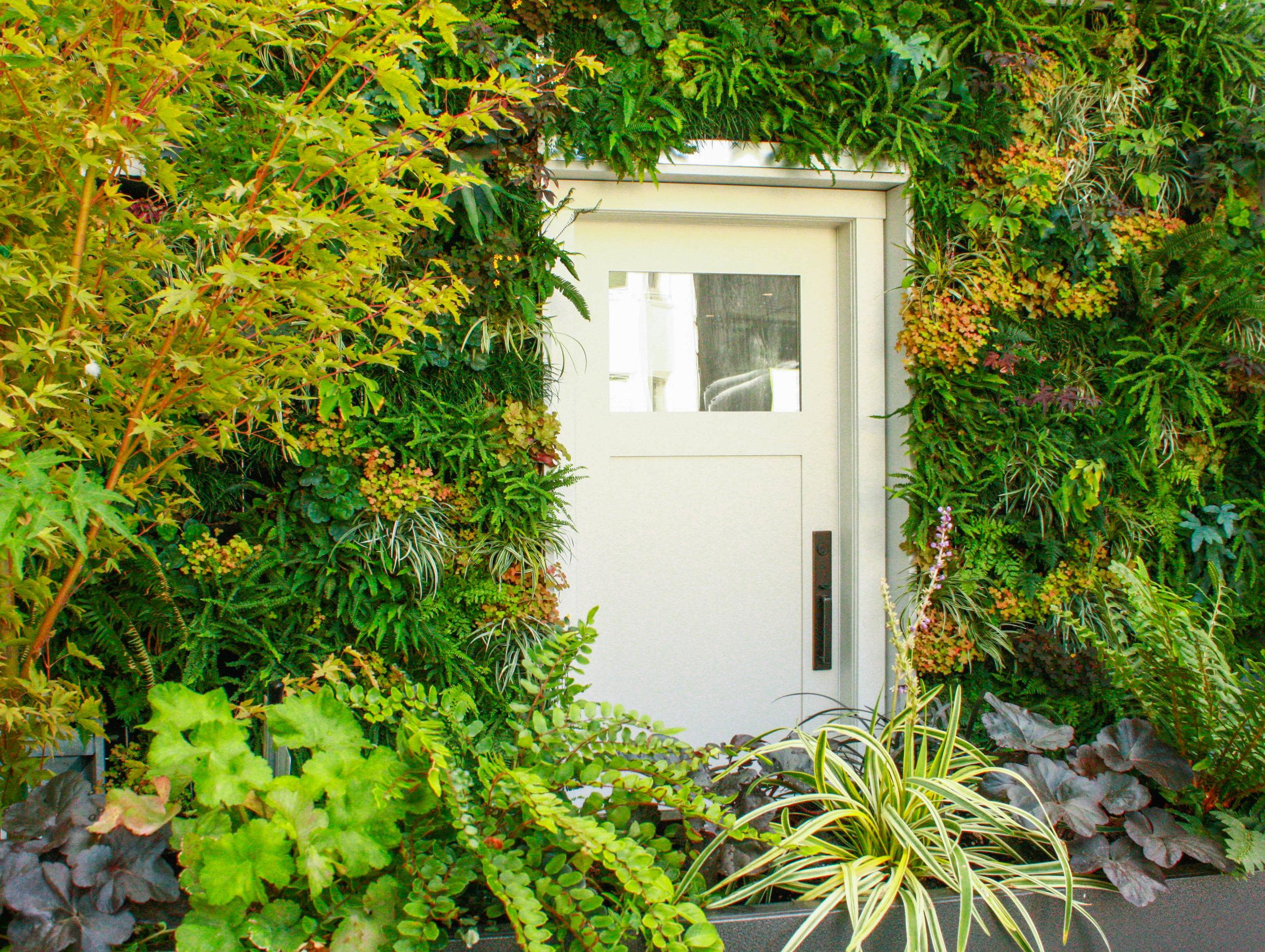 Green wall with door.jpg