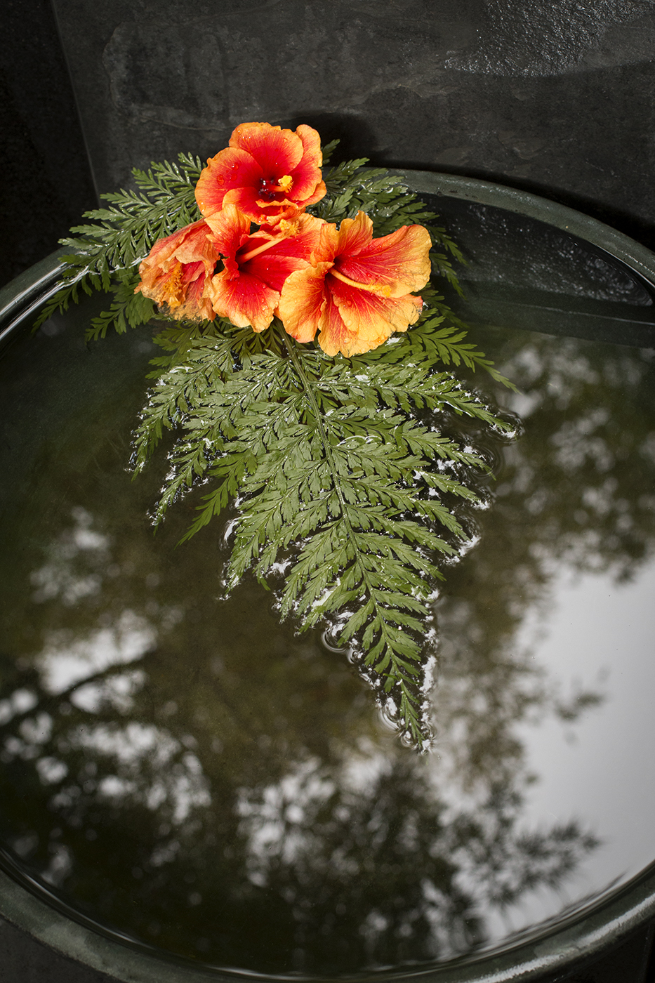 Secret Garden_5011.jpg