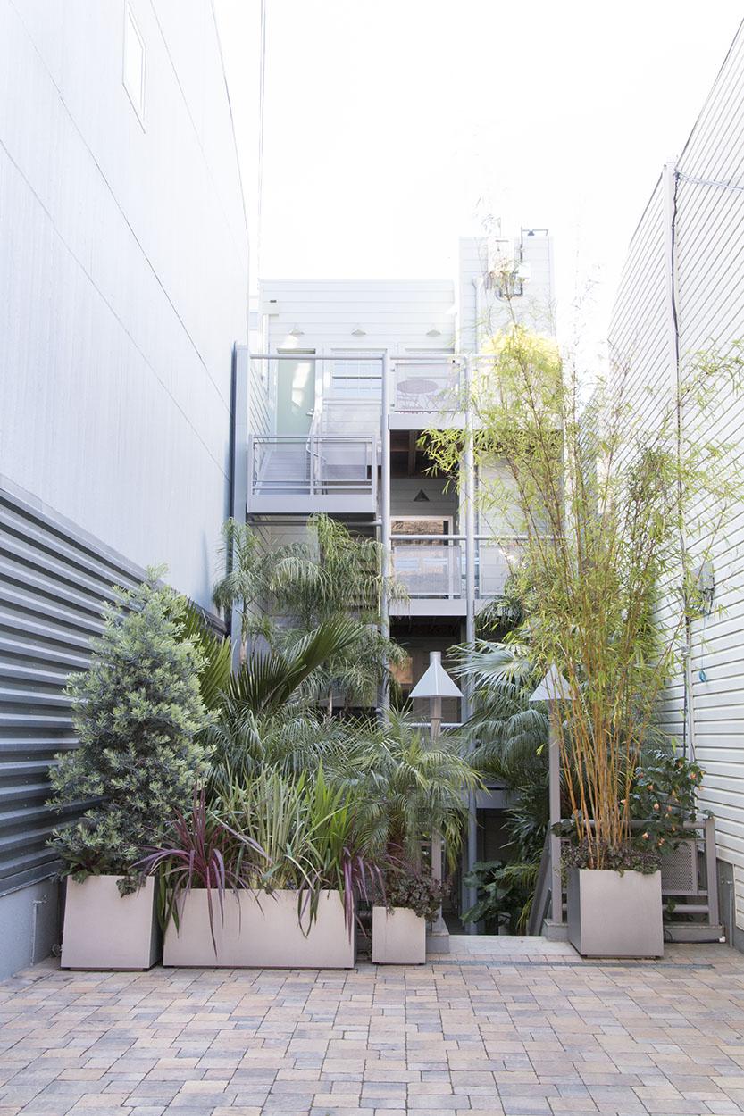Debra's Vertical Garden_6026.jpg