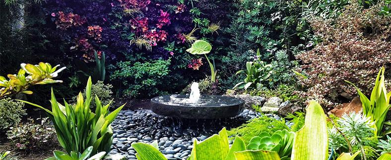 landscape Gardens - Transform your outdoor space