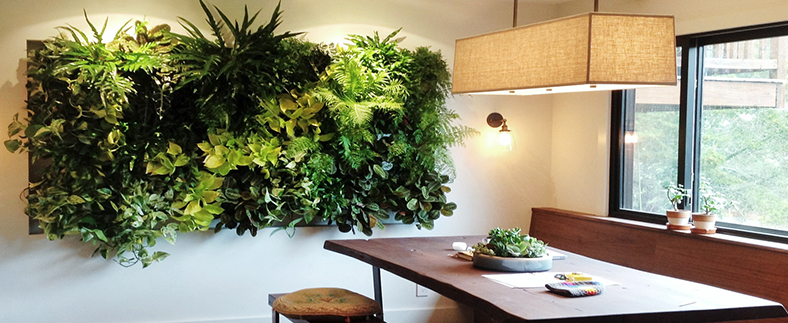 vertical gardens - Adorn your walls with the best plants