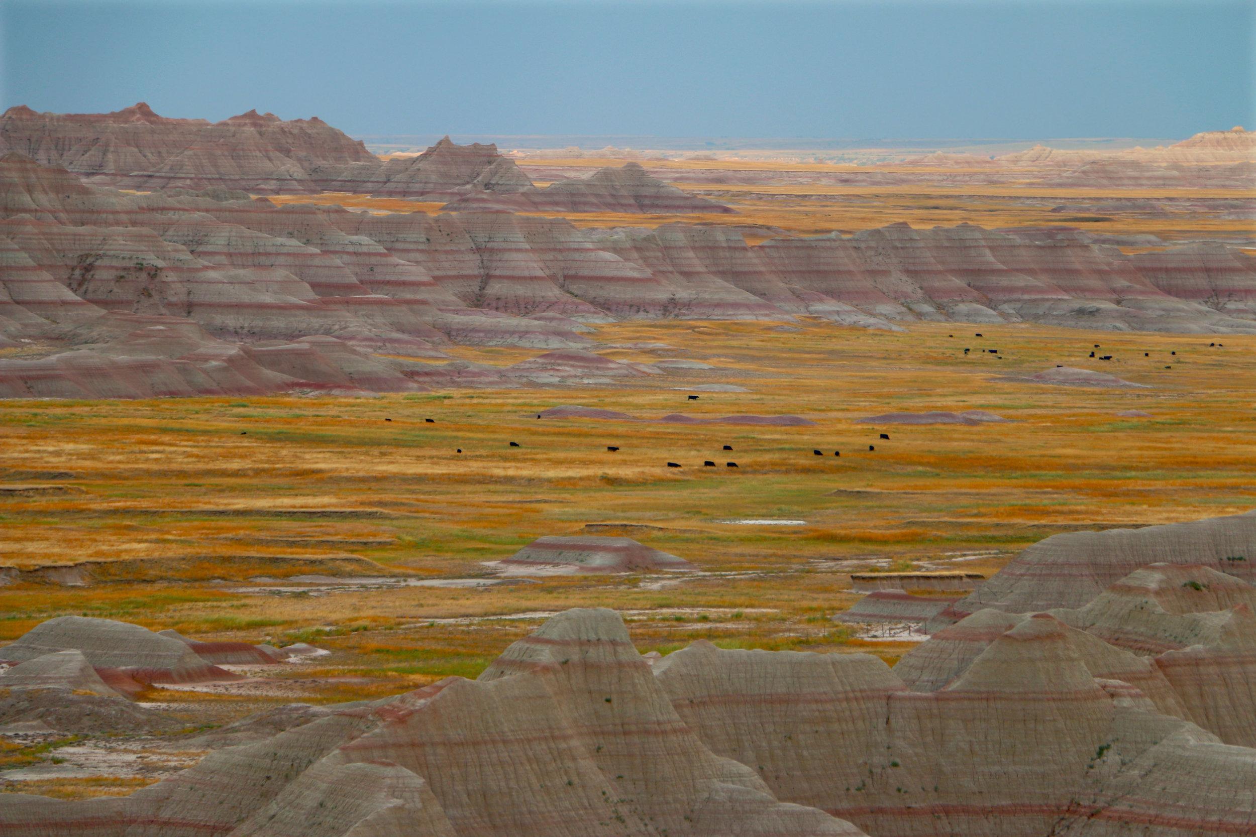 """Badlands"" by Katie Levesque"