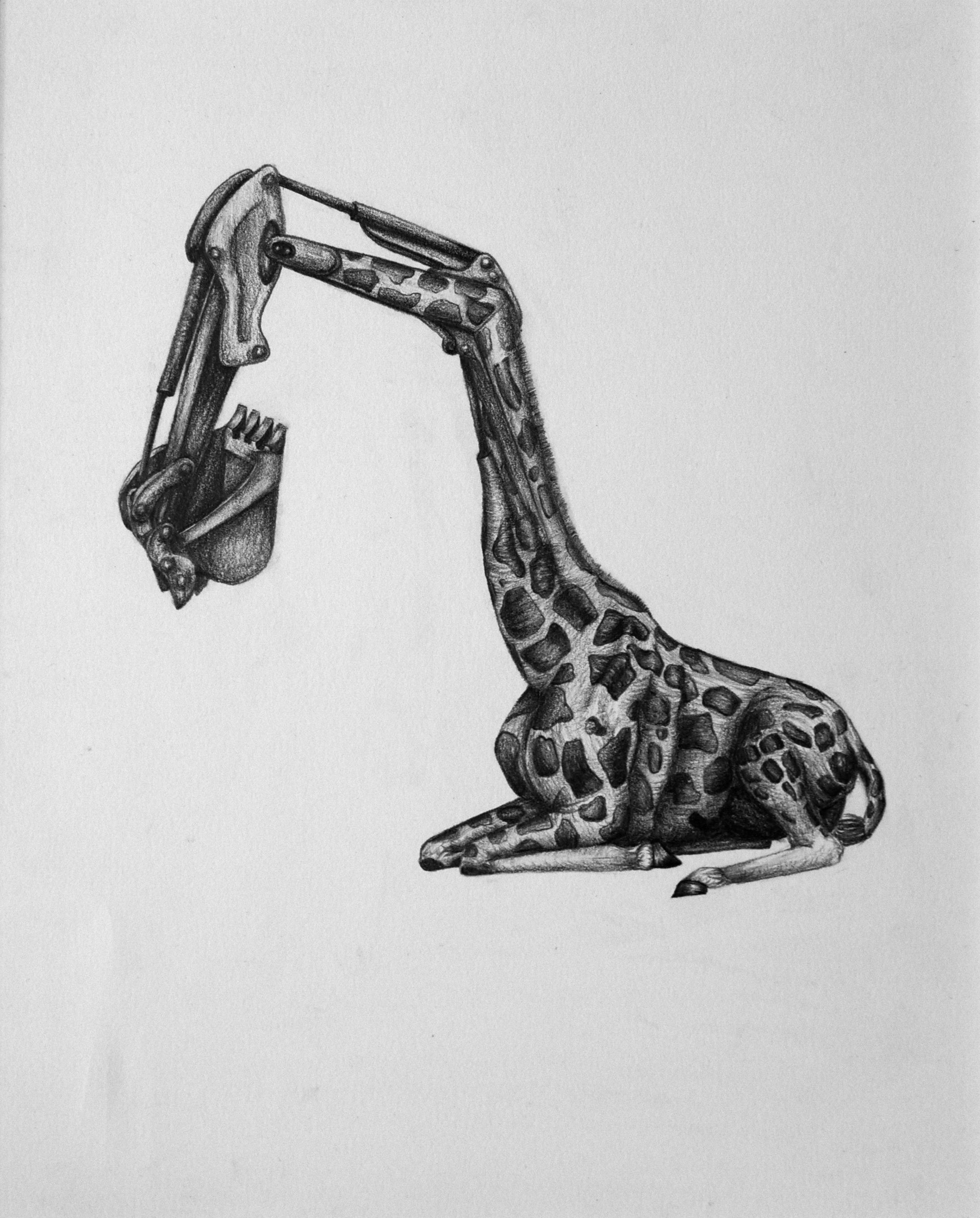 """Biomimicry 4"" by Martha Swift"