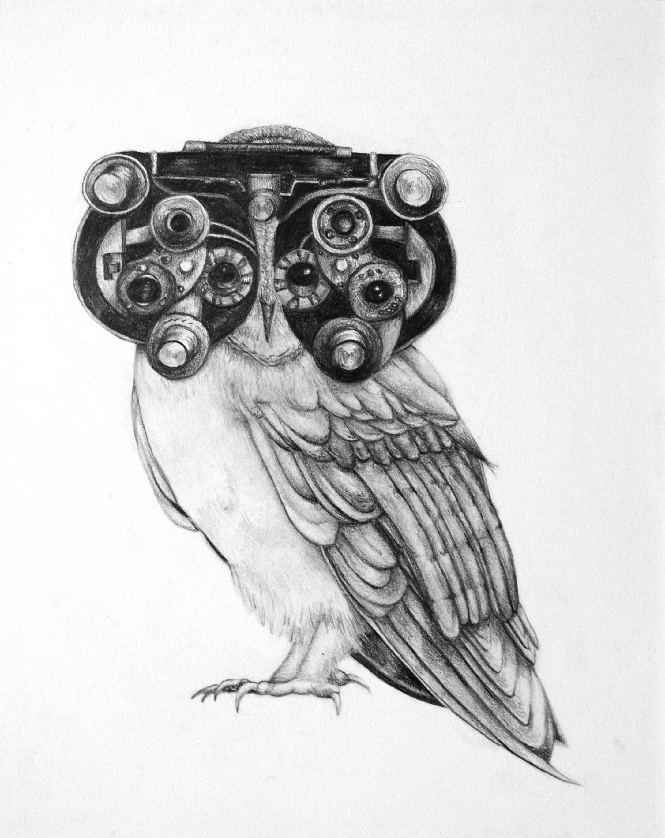 """Biomimicry 10"" by Martha Swift"