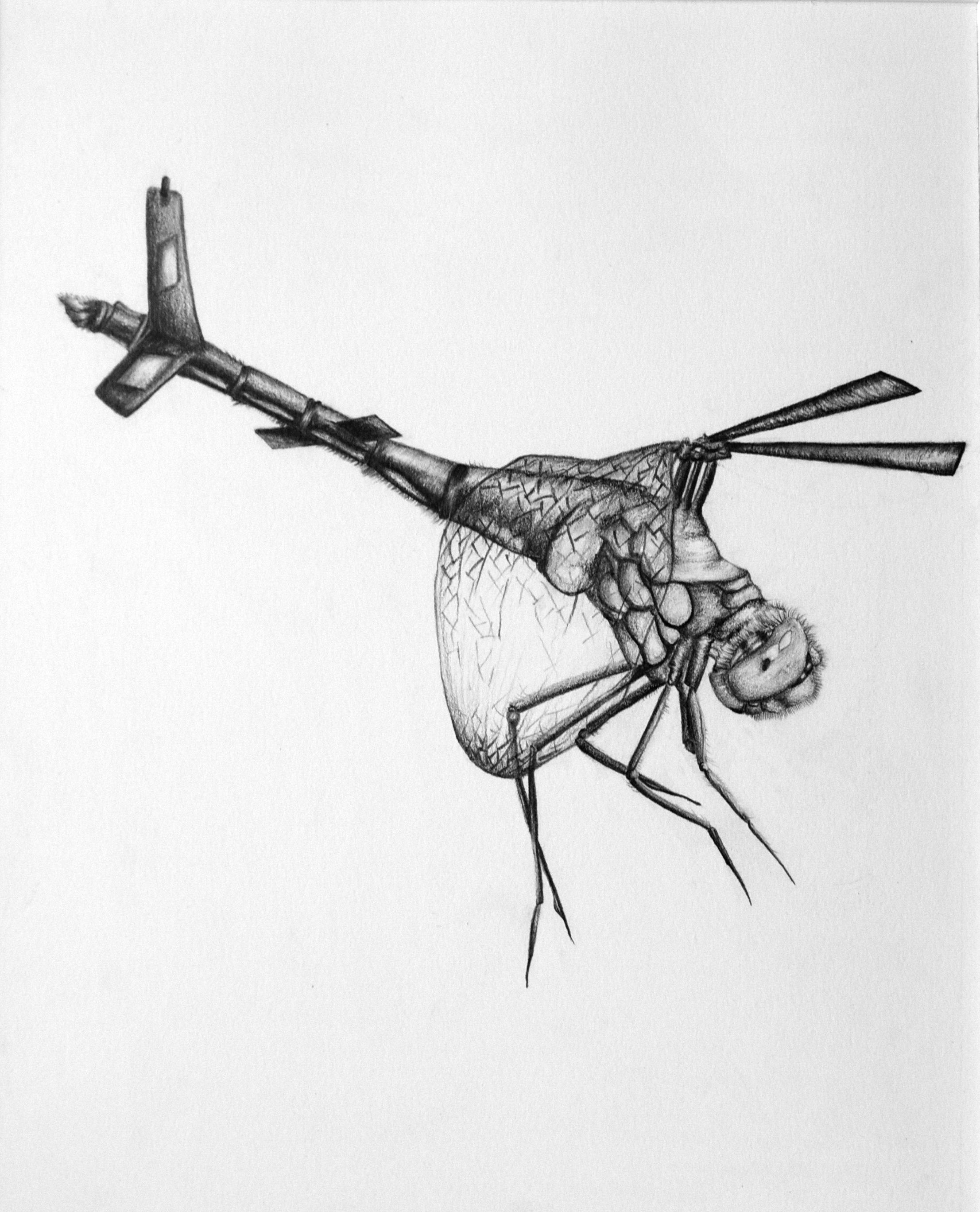 """Biomimicry 9"" by Martha Swift"