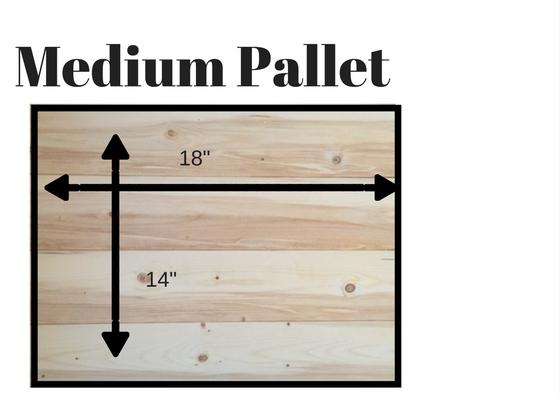 Medium Pallet.jpg