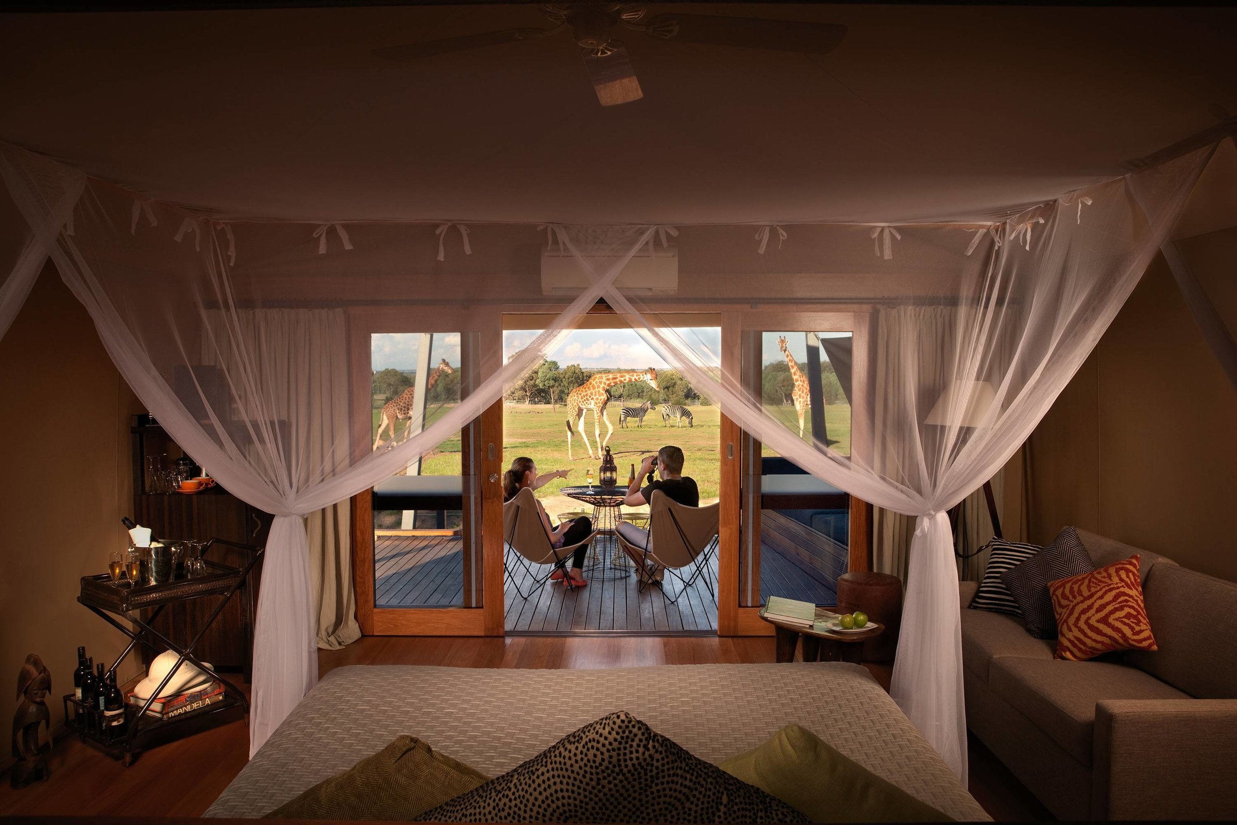 Dubbo Zoofari Lodge - Taronga Western Plains Zoo 1 nights accommodation, return airfares, bike hire, breakfast and an African inspired banquet dinner.Ex Newcastle or CanberraStarting from $509 per person twin share★★★★★