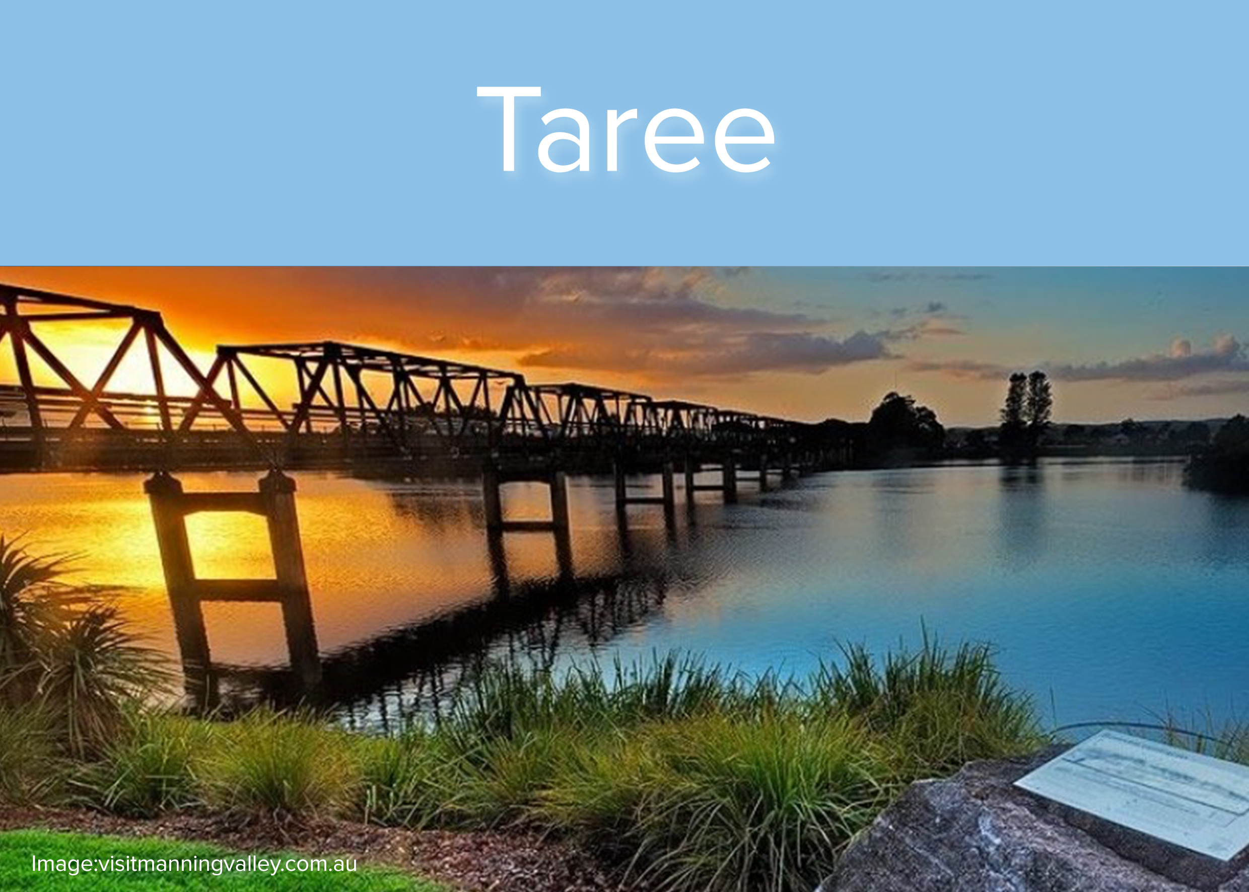 taree-square.jpg