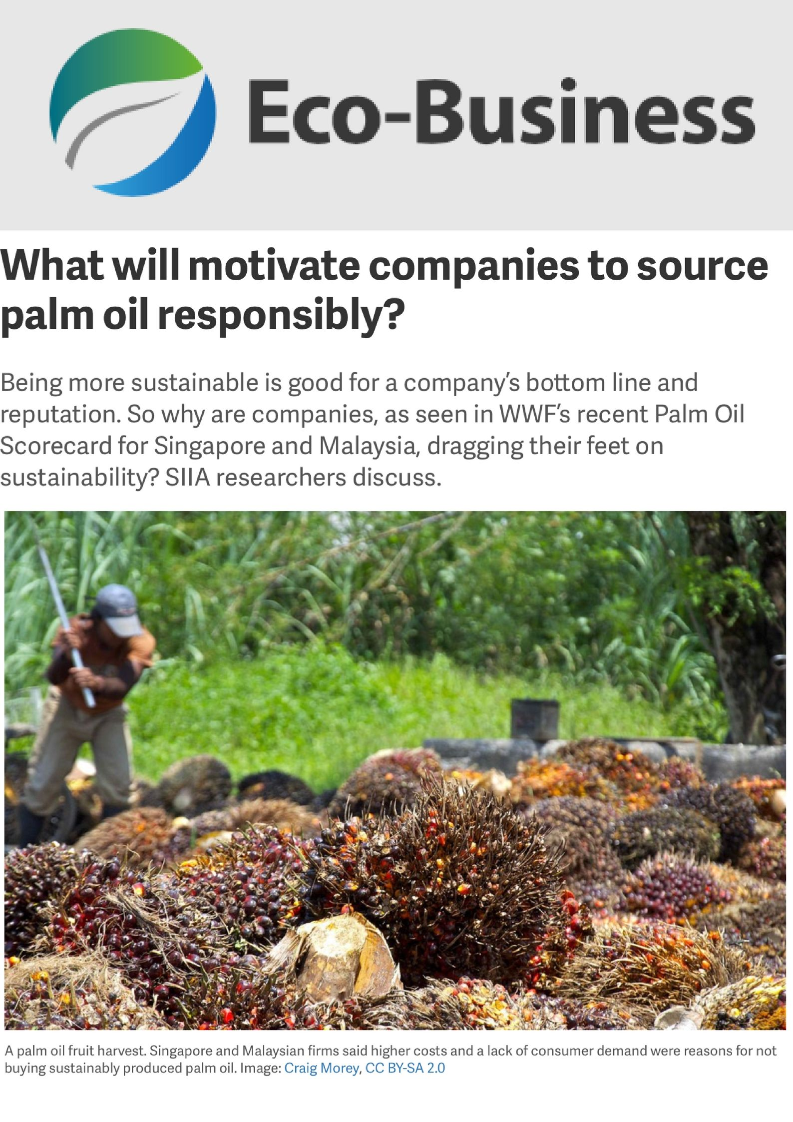 Eco-Business_ What will motivate companies to source palm oil responsibly_.jpg